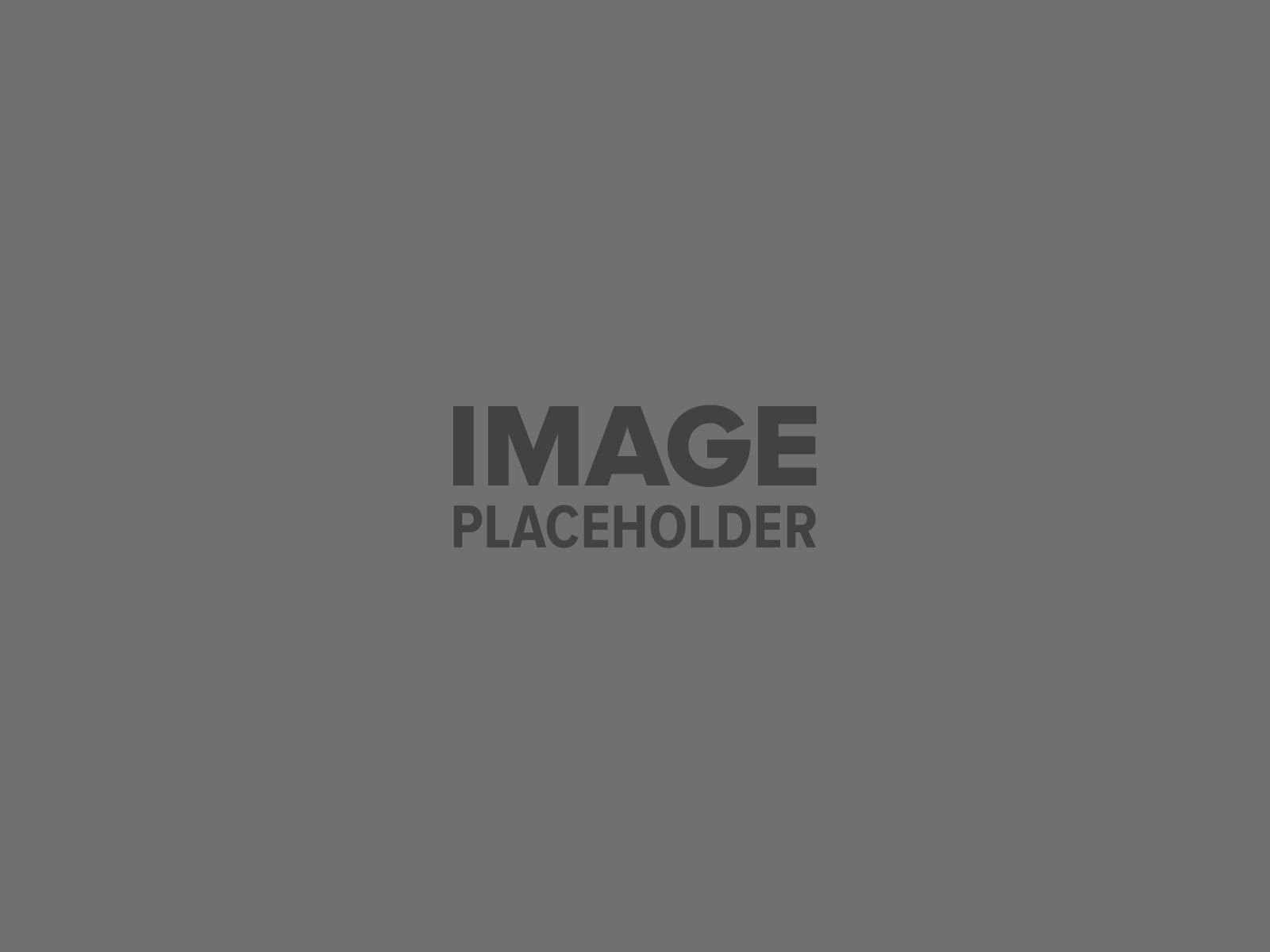 pojo placeholder 2 - Food