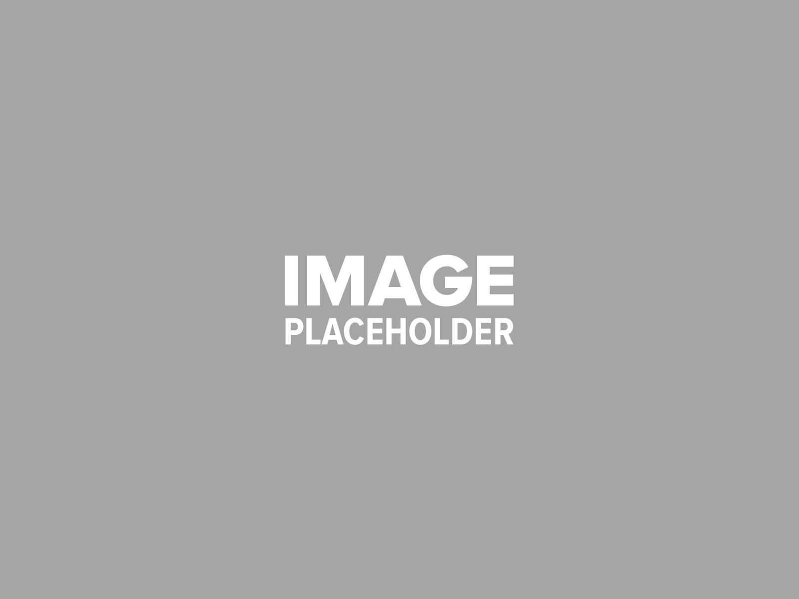 pojo placeholder 3 - Food