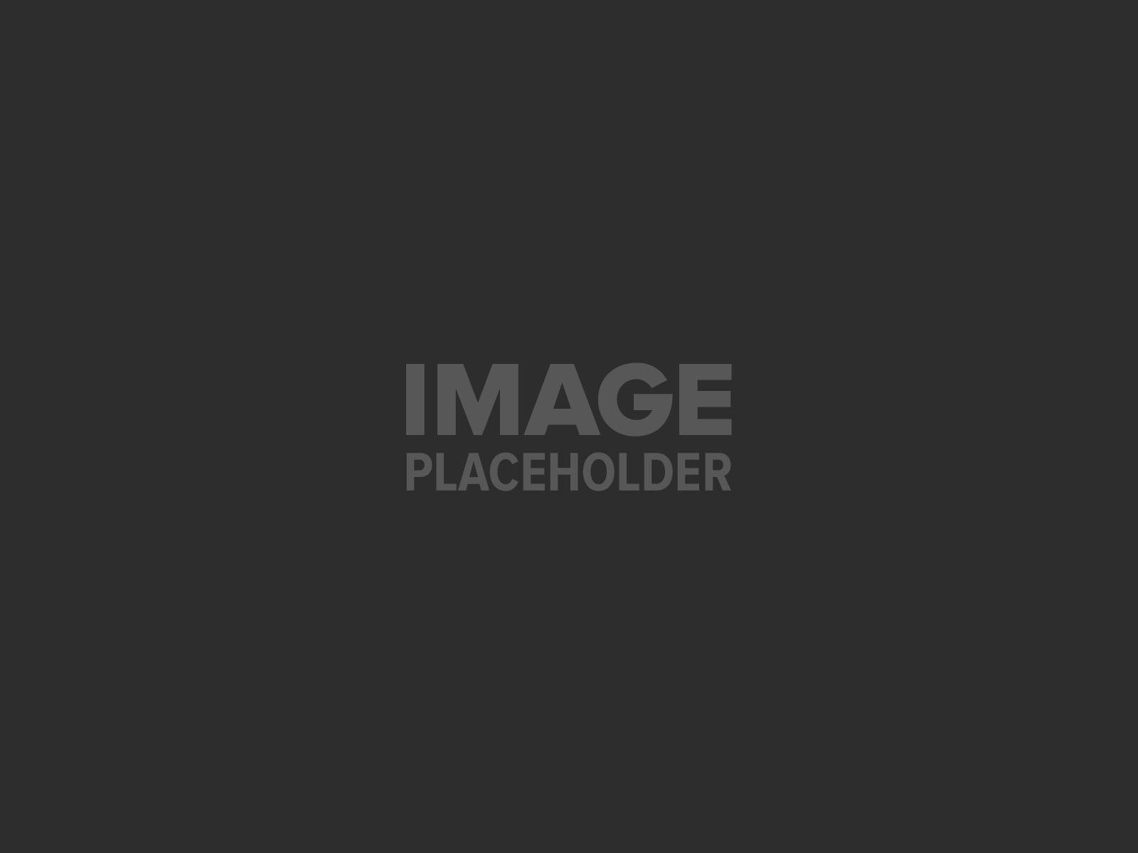 pojo placeholder 4 - Food